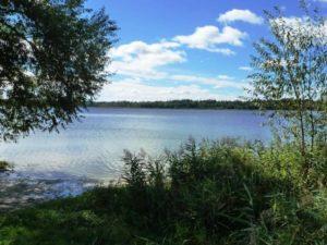 Белое озеро Ульяновская область снять домик
